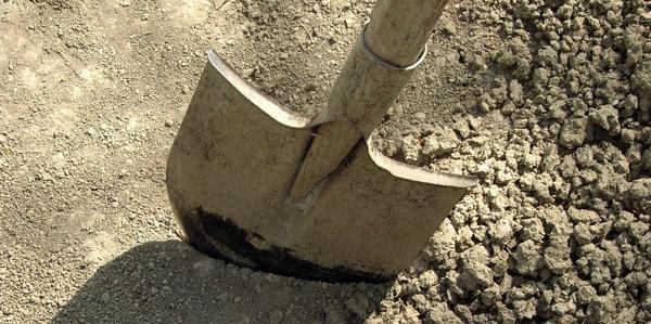 плотная почва
