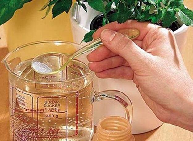 Разведение янтарной кислоты из порошка